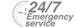 24/7 Emergency Service Pest Control in Finchley Central, N3. Call Now! 020 8166 9746